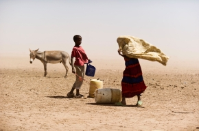 Africa's first 'Islamic-compliant' livestock insurance pays 100 herders in Kenya's remote drylands of Wajir for drought-related livestock losses