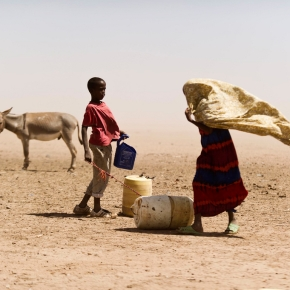Africa's first 'Islamic-compliant' livestock insurance pays 100 herders in Kenya's remote drylands of Wajir for drought-related livestocklosses