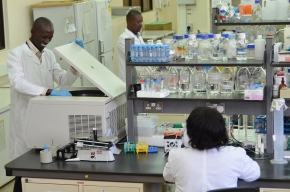 Scottish and Kenya scientists in new alliance to improve animal breeding and health in developing countries