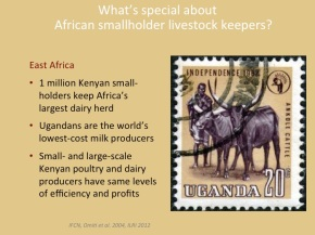 African animal agriculture:  Grasping opportunities as a great livestock transition gets underway