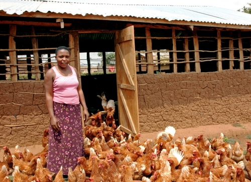 ChickensAndFarmerInUganda