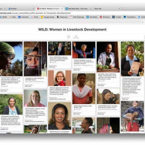 WILD: Take a look at some of the 'Women in Livestock Development'
