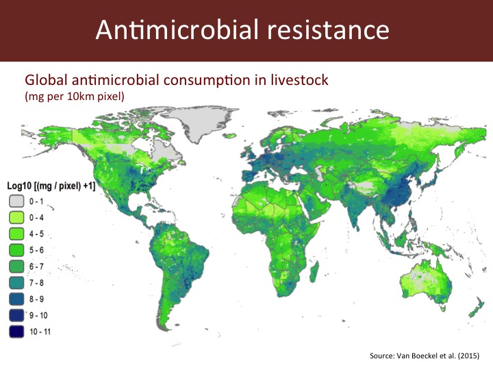 research paper on antibiotic resistance Urgent action must be taken to address the rising threat of antibiotic resistance, according to a new paper released by the office of the chief scientist (ocs.