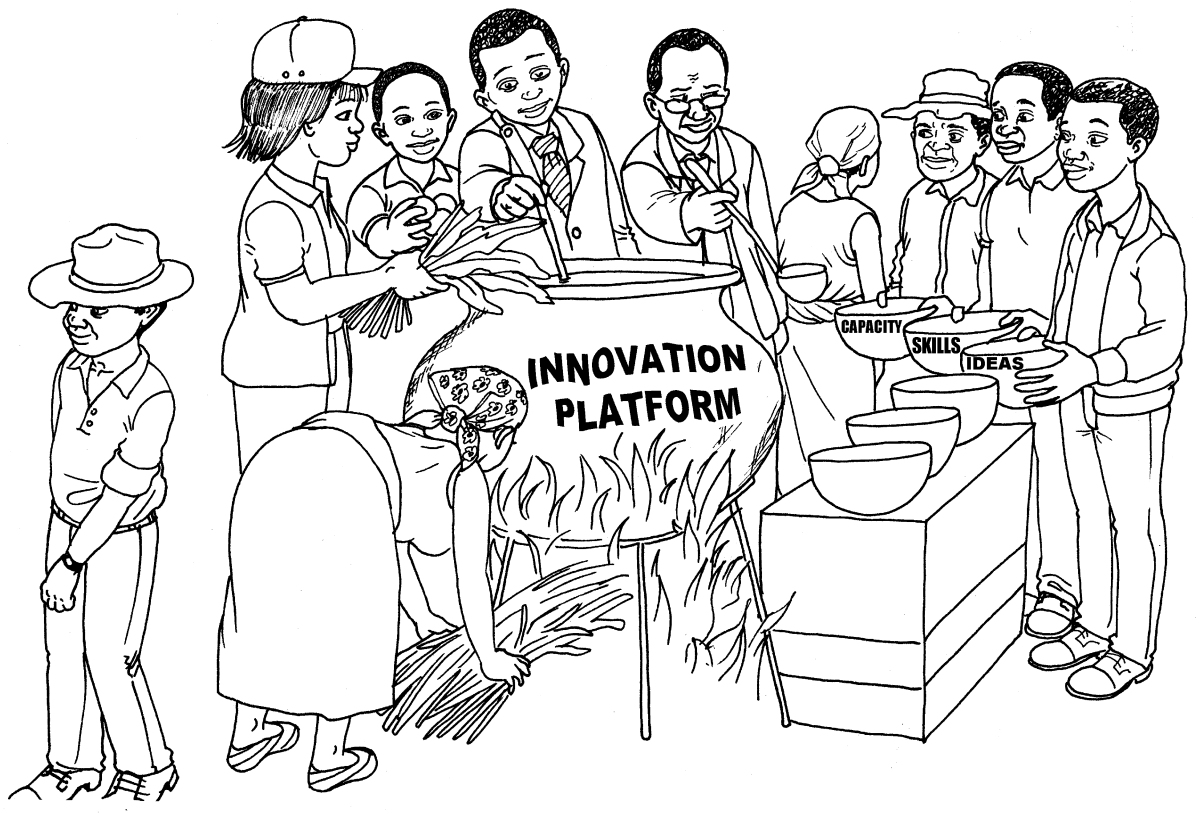 Capacity development, and innovation systems and platforms