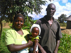 Forage farming changes lives of Zimbabwe smallholder farmers