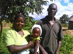 Forage farming changes lives of Zimbabwe smallholderfarmers