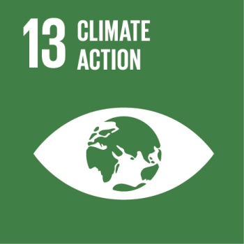 SDG_Icon_13