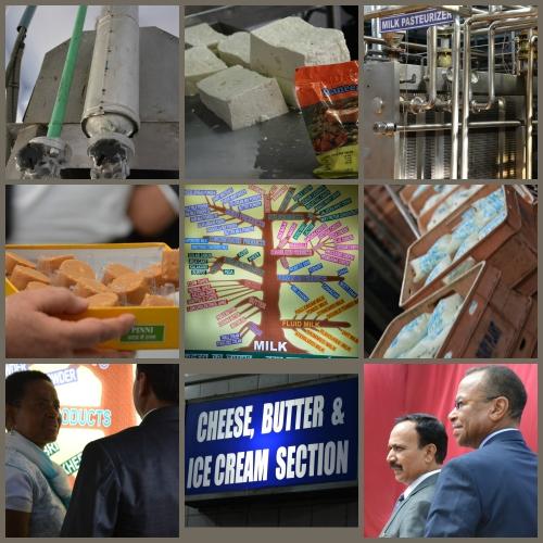 NDRI_Collage_MilkProcessingPlants