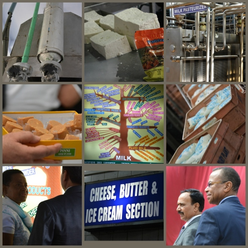NDRI_Collage_MilkProcessingPlants