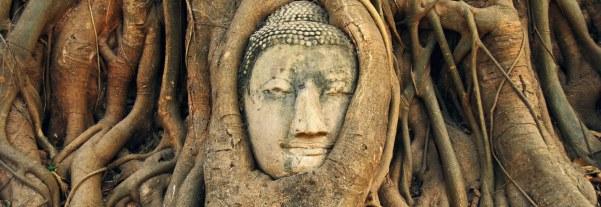 Wat.Mahathat.Ayutthaya