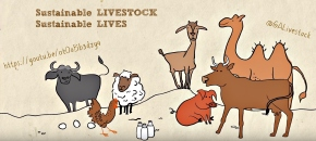 Sustainable livestock, sustainable lives: Livestock's role in global health, equity and environment