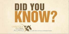 DID YOU KNOW? ILRI in the Livestock Global Alliance