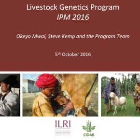 A first look at ILRI's new research programs: Livestock Genetics