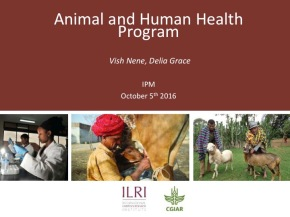 A first look at ILRI's new research programs: Animal and Human Health