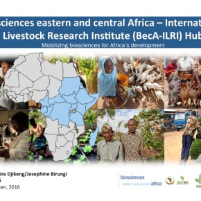 An updated look at ILRI research programs: The Biosciences eastern and central Africa-ILRI Hub