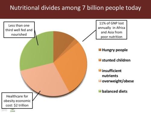 combating nutritional blindness in children fritz carl