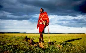 Livestock-wildlife trade-offs for pastoral livelihoods in the conservancies of the MasaiMara