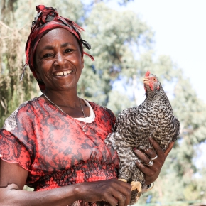 Capitalizing on women in livestock development—ILRI's Jimmy Smith and Isabelle Baltenweck speak out