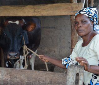 13889953054stapletonjmFaustina Akyoo, dairy farmer in Tanga, Tanzania.