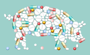 Imposing user fees on veterinary antimicrobials is a plausible way to curb antimicrobial use in food animals