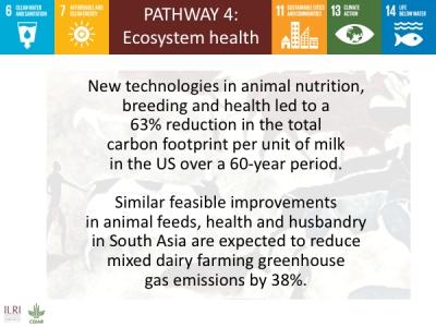 Spotlight From Ilri News International Livestock Research Institute