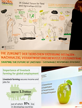 Towards a sustainable, responsible and efficient livestock sector—Jimmy Smith at the Berlin Global Forum for Food andAgriculture