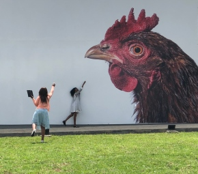 Art underlines the precious value of poultry geneticresearch