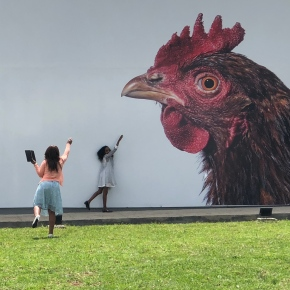 Art underlines the precious value of poultry genetic research
