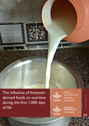 Meat, milk, eggs can make a big difference in the first 1,000 days of life in low-income countries—New report