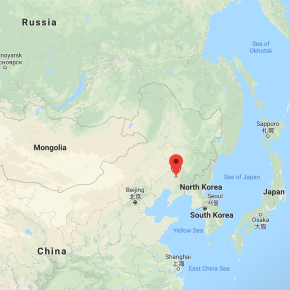 Deadly African swine fever arrives in China, the world's largest producer ofpigs
