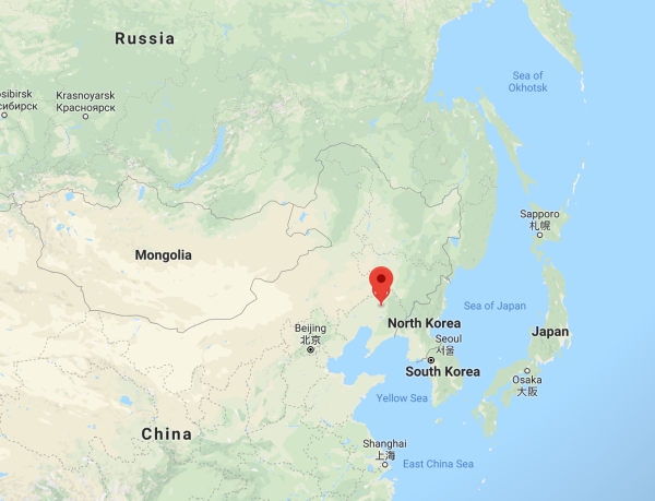 Deadly African swine fever arrives in China, the world's largest