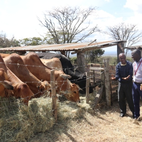 Senior Myanmar livestock official visits ILRI's Nairobi headquarter to discuss possible research partnerships