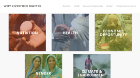 Why livestock matter – share your project changestory