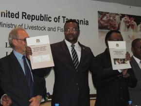 Tanzania launches USD596 million livestock masterplan
