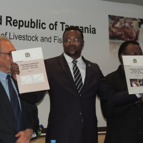 Tanzania launches USD596 million livestock master plan