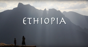 MUST WATCH: Celebrating Ethiopia's agriculturaltransformation