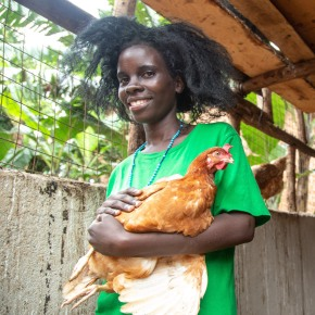 Reducing antimicrobial use in Uganda's poultry value chain – BuildUganda project aims to manage risks through tested interventions​