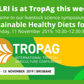 ILRI holds a livestock symposium at the International Tropical Agriculture Conference this week