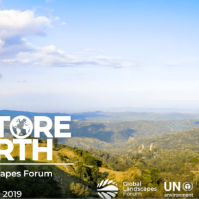 New York Global Landscapes Forum 'Restore the Earth' 2019