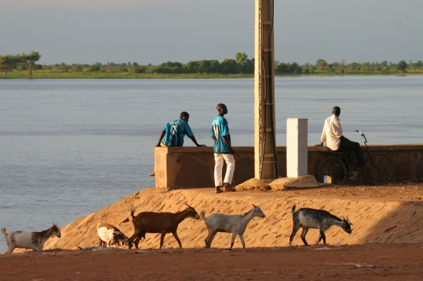 Fishermen, sahelian goats by the Niger river.