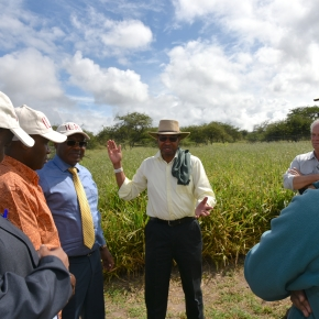 Senior Kenya government officials visit ILRI's Kapiti Research Station